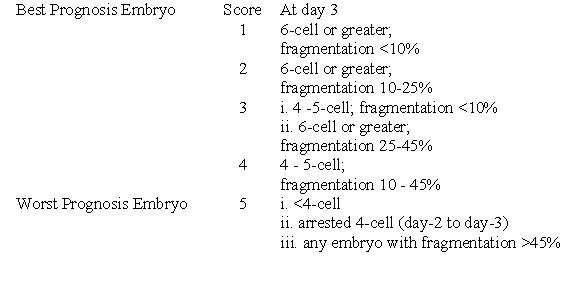embryo_growth24